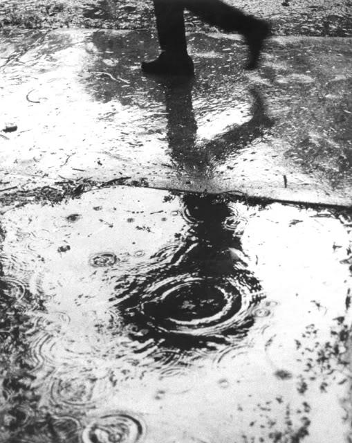 Chiếc Bóng của Giọt Nước Mắt - Page 2 Rain