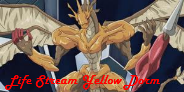 Life Stream Yellow Dorm