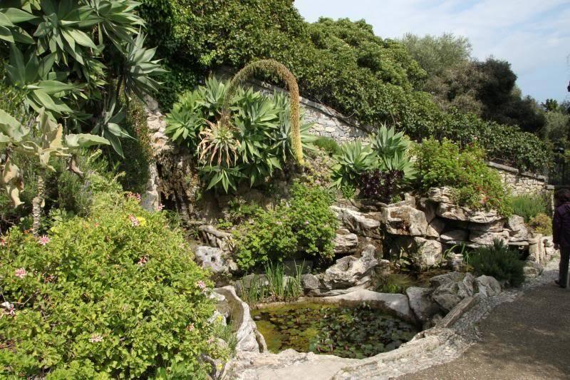 Jardin Botanique de Hanbury IMG_8980_zps46937a8f