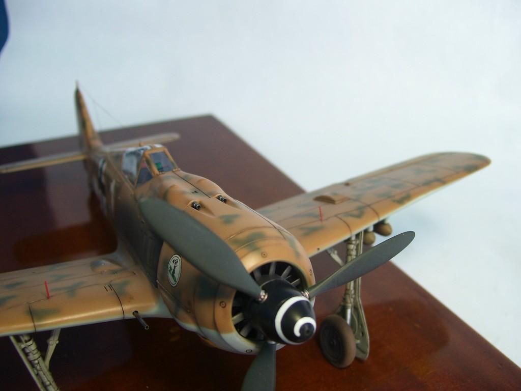 Focke Wulf 190 F-8 Blanco 1, I/SG4 (Tamiya 1/48). FockeWulf190F-8%2025