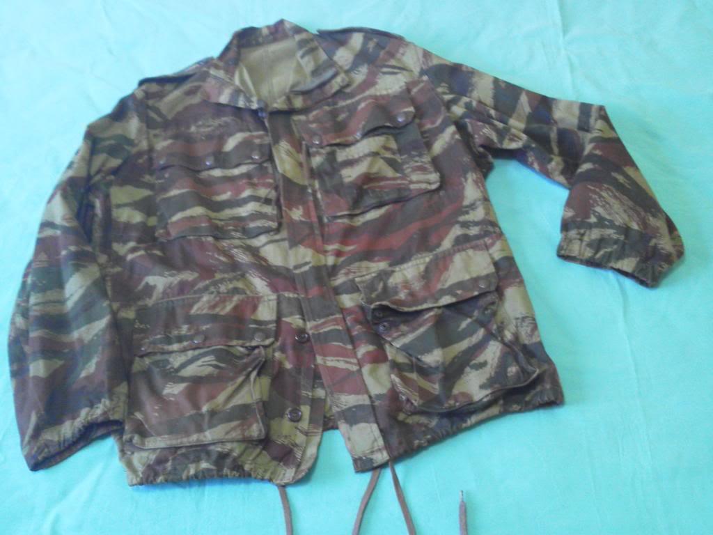 French lizard camo uniforms IMG_20130621_123124_zpsc592d3e9