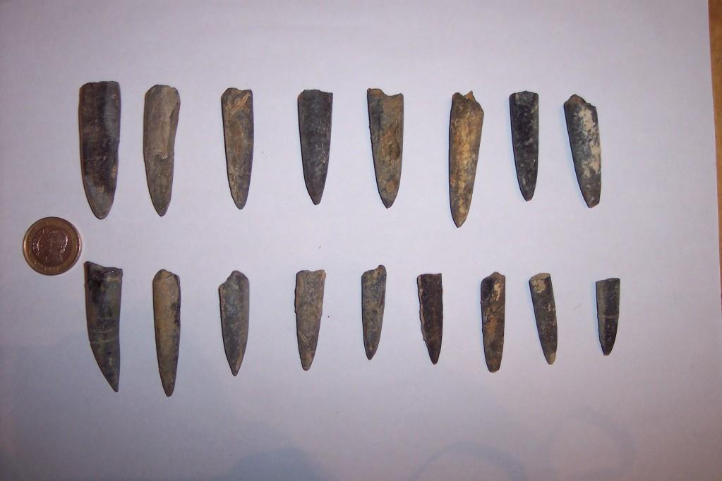 Photos of fossils to change. NannobelusAcutus-JursicoInferiorSinemuriense-SalasdelosInfantesBurgos