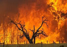 COMO INSTALAR UN AUTOESTEREO Incendio