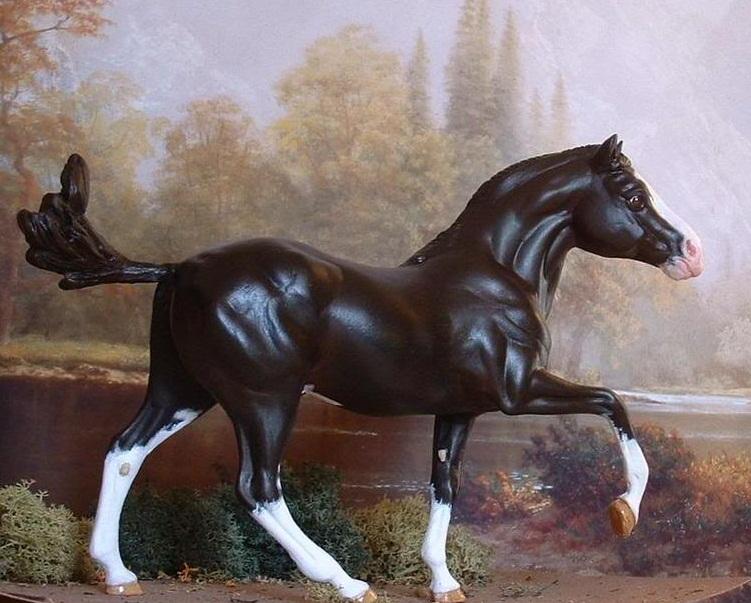 Model horse photo show Cherubino_zps2557919c
