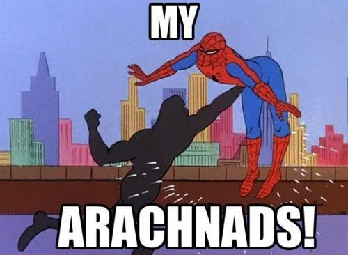 To all the mofos 60s-spiderman-meme-arachnads