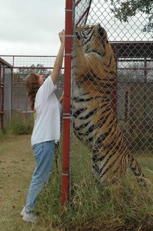 Comparação de  tamanho entre  animais  e   Seres humanos - Página 2 3c6d55fbb2fb4316ec05f9c620a4462309f7d370