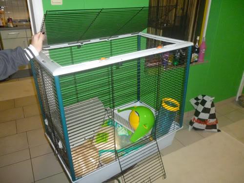 Avis sur cage d'occasion P1060053h