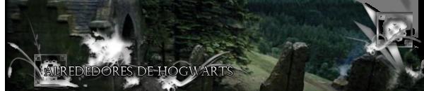 ● ALREDEDORES DE HOGWARTS ●