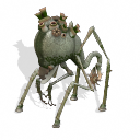 PESTES (Mephitidae leprae vulgaris) Pestes-1