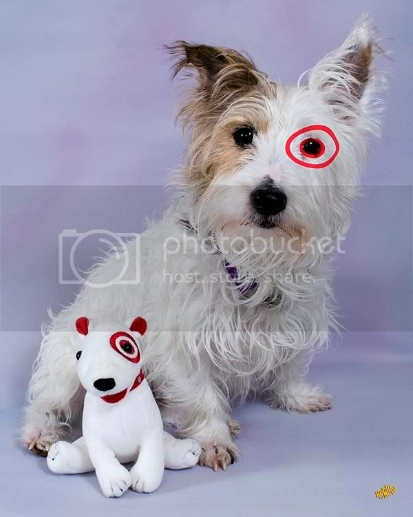 Will the Real Target Dog Please Stand Up! 2-16-2007_JRT004tar