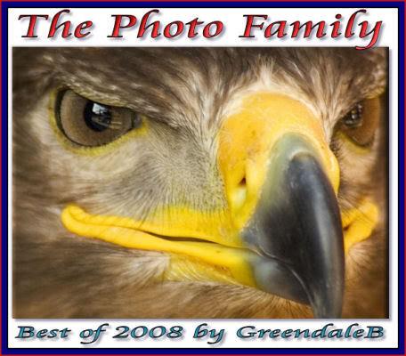 ThePhotoFamily