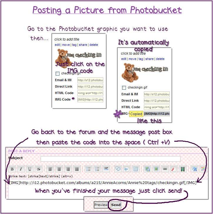 Posting a Picture from Photobucket Postingfrombucket