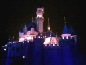Offical Disney Park Picture Of The Day! Castle2