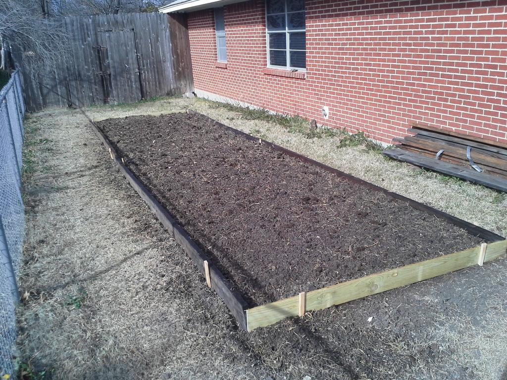 Our Salsa Garden  Garden1_zpscc6ff058