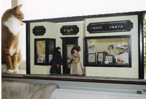 my dolls houses etc Winkel6