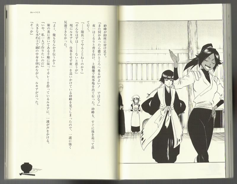 Bleach Books, les ouvrages indispensables. HDR7