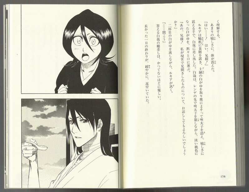 Bleach Books, les ouvrages indispensables. HDR8