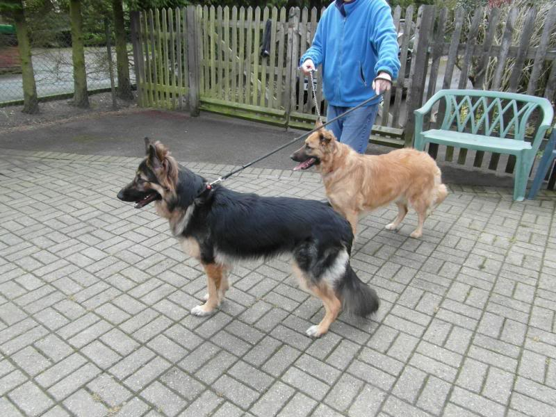 Mia 23 month old beauty homed Camera004-1