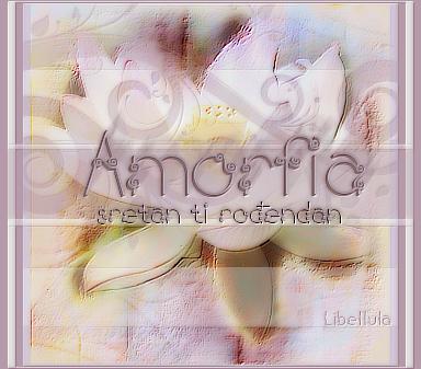 Amorfia srecan rodjendan! Amorfia