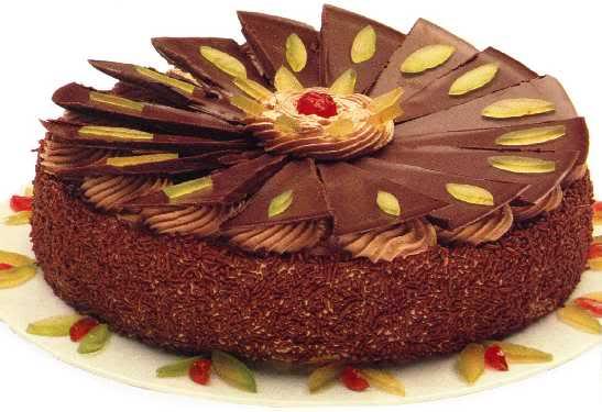 LIBELLULA SRECAN RODJENDAN !!! Cioccolato