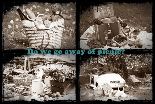 2x06 ---> Do we go away of picnic? Cats