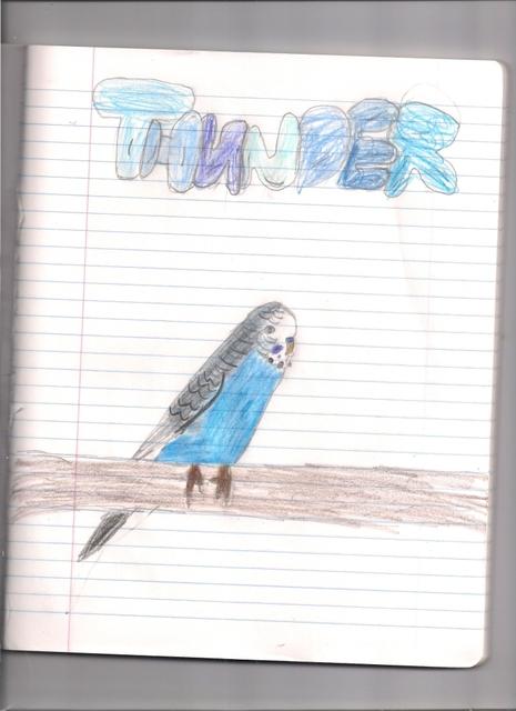 Thunder drawing! Scan0002