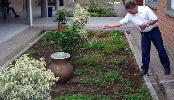 Los 6 Pasos para Resembrar un Cesped Lawn02
