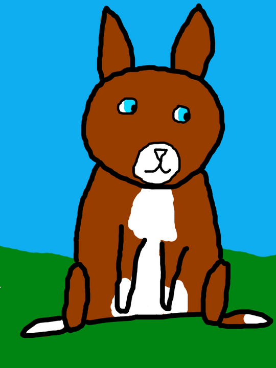 Rabitt Conejo