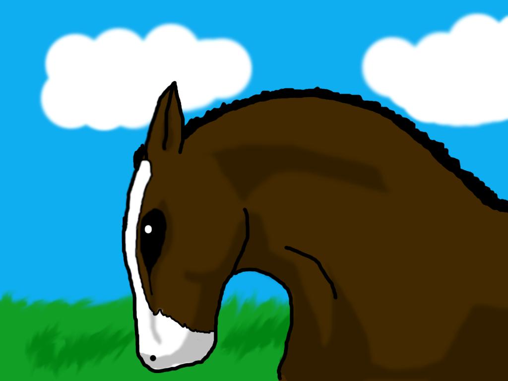 horse s Horse