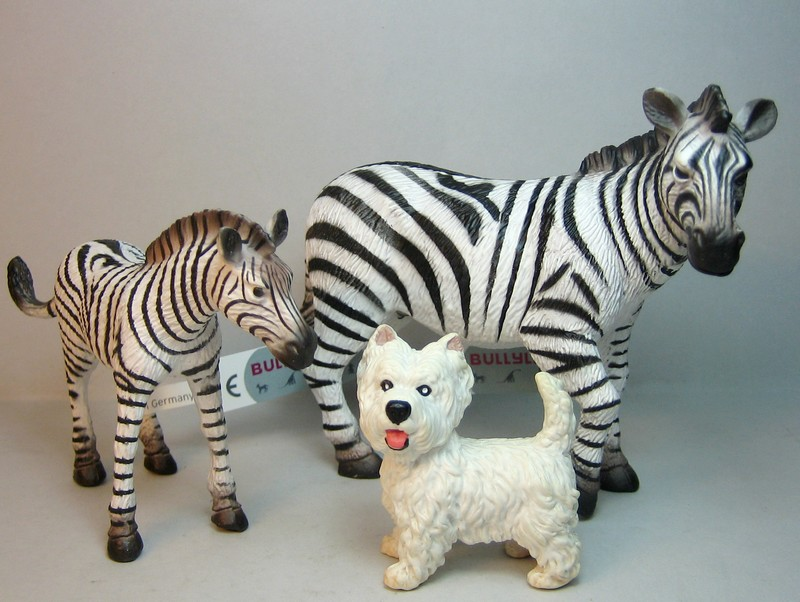 Some new Bullylands for 2013 :-) Zebras13westie_zpsf08807ff