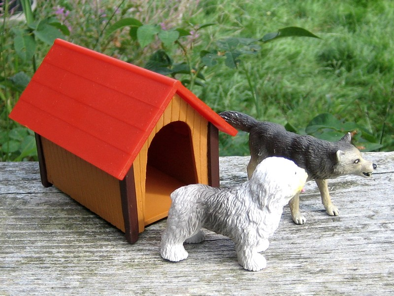 A RED, red deer, a little dog house, dire wolf, and a GREAT horse shed :-) Doghouse