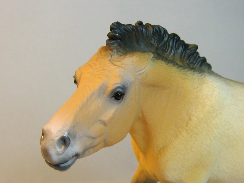 Some new Collecta horses released in February 2013 Prezehead_zps81ba94ff