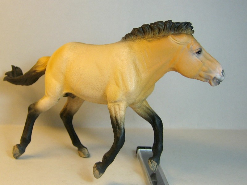 Some new Collecta horses released in February 2013 Prezeleft_zps2f400035