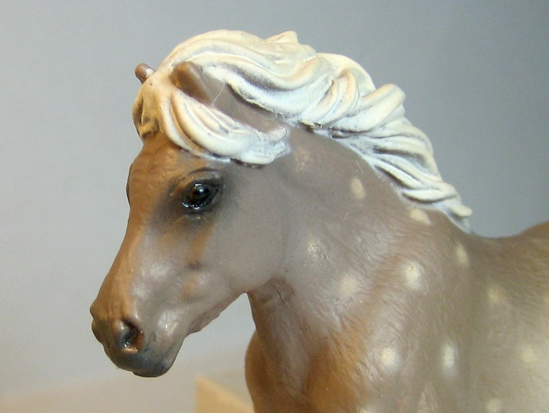Some new Collecta horses released in February 2013 Shelhead_zps3c86ac58