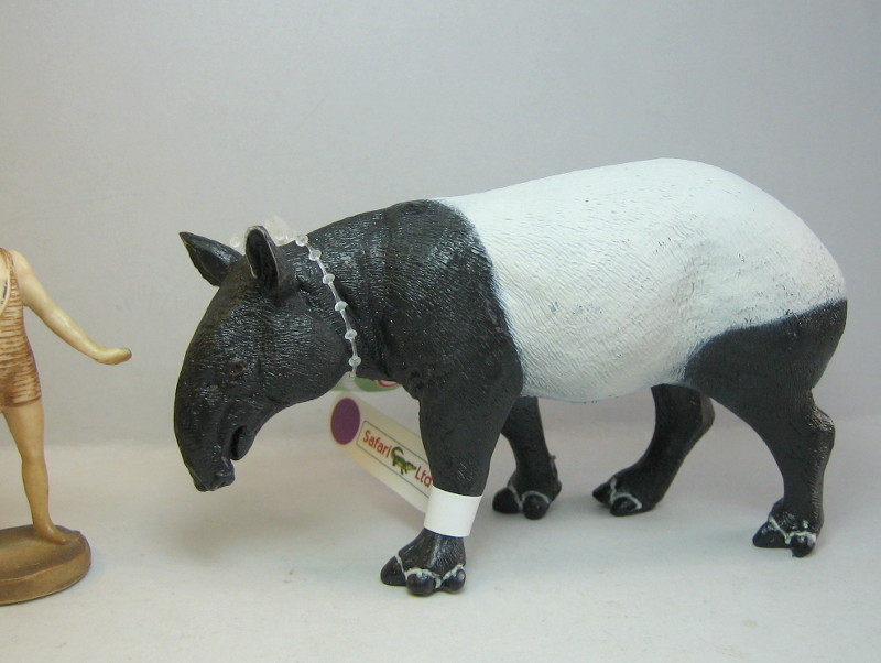 I received that wonderful tapir calf from Ana ... Asiansafari_zps06aa3408