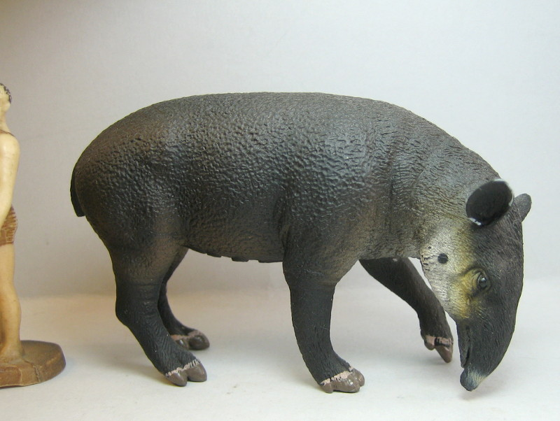 I received that wonderful tapir calf from Ana ... IMG_7270_zps17fc505e
