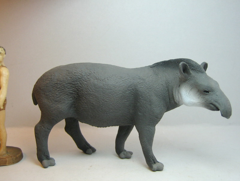 I received that wonderful tapir calf from Ana ... IMG_7271_zpscce16ab8