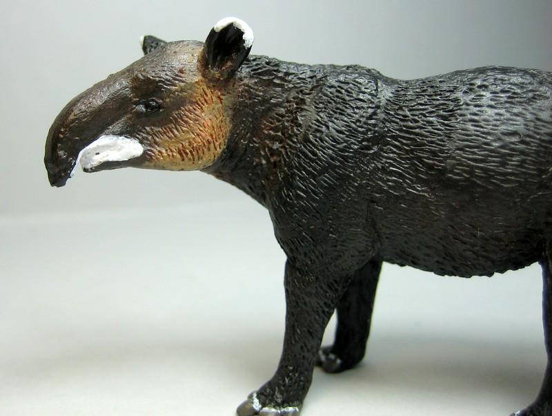 Pronghorn and mountain tapir made by Anna :-) Tapirface1