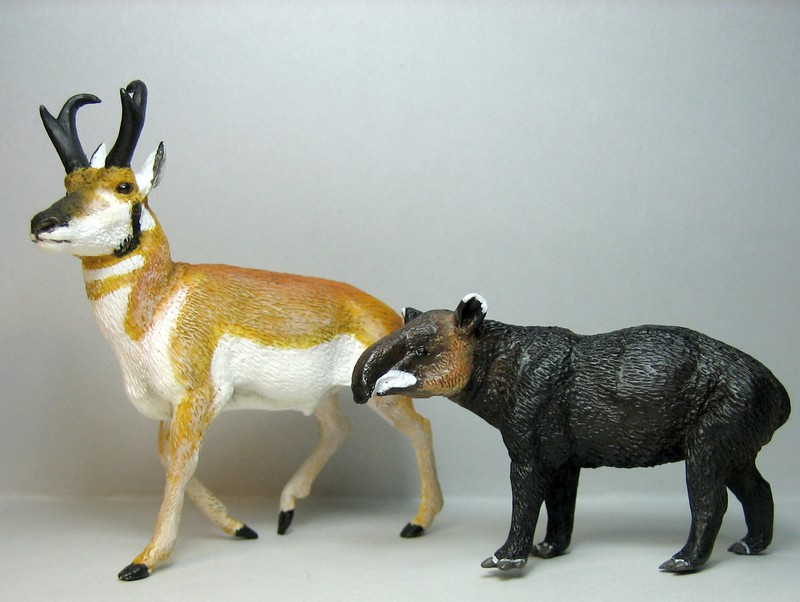 Pronghorn and mountain tapir made by Anna :-) Tapprog