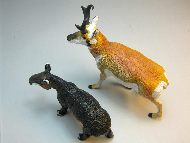 Pronghorn and mountain tapir made by Anna :-) Tapprogup