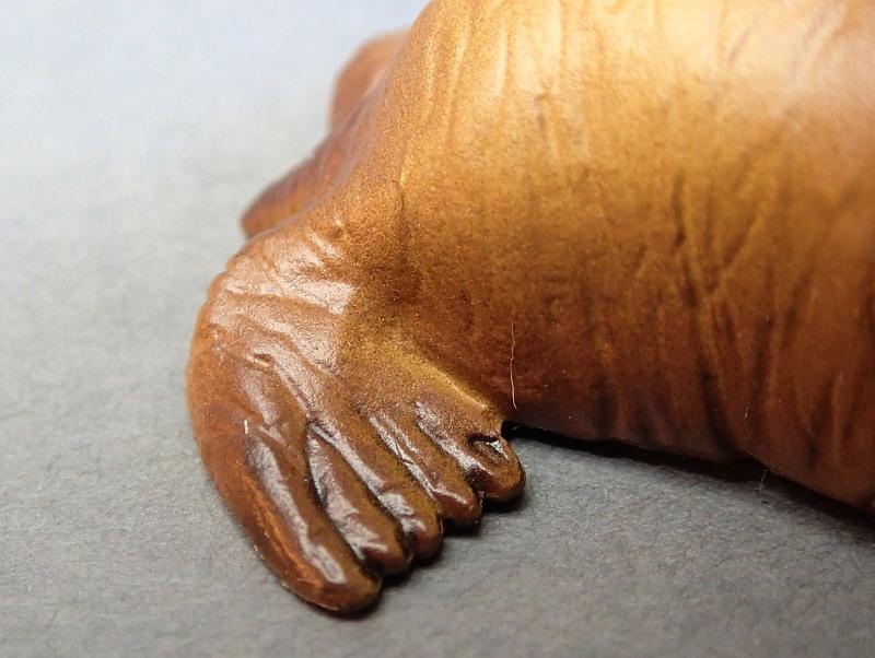 EIKOH walrus , - impressive detail in a small model ;-) EIKOHWalrus13_zpsykqrdlp1