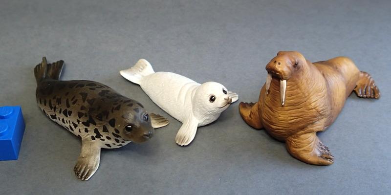 EIKOH walrus , - impressive detail in a small model ;-) EIKOHpinnipeds_zps77nnisfy