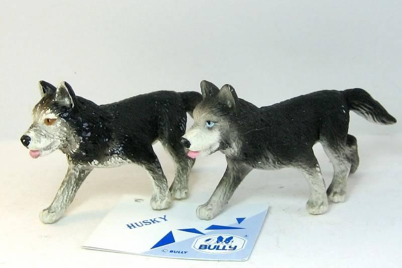 Baby urangutan and some new dogs HUSKIESOLD