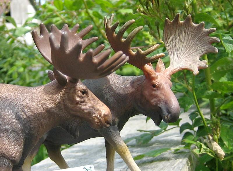A little mojo shopping freekout : Pigs, sheep, cows, a moose and a kangoo :-D Mojcolmoose