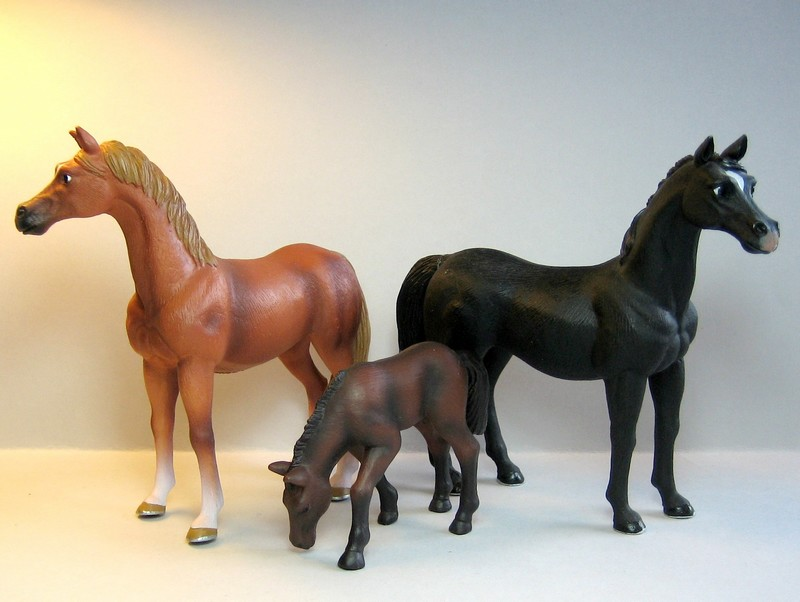Mojo horses from 2011 Mojofuldblodno3