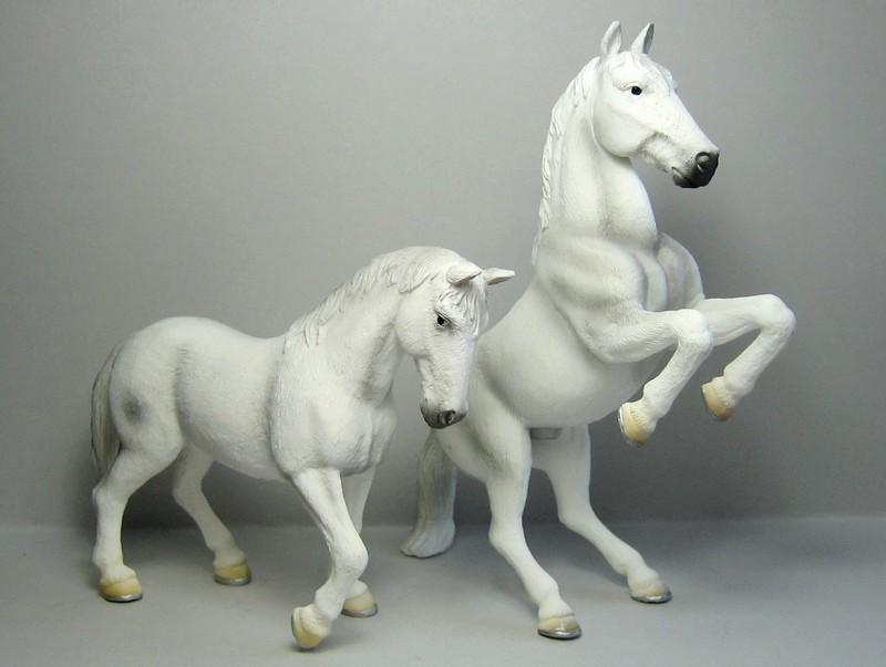 Mojo horses from 2011 Mojolippizas