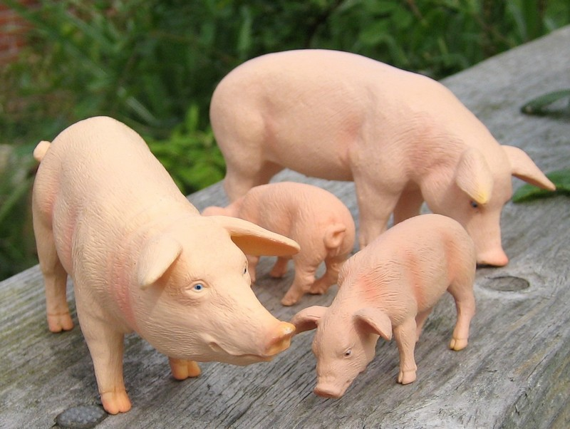A little mojo shopping freekout : Pigs, sheep, cows, a moose and a kangoo :-D Mojopinkpigs