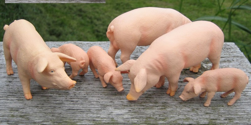 Mojos from Kristie : News 2012, mammoth, tiger, pigs and more.... Piggiesflock