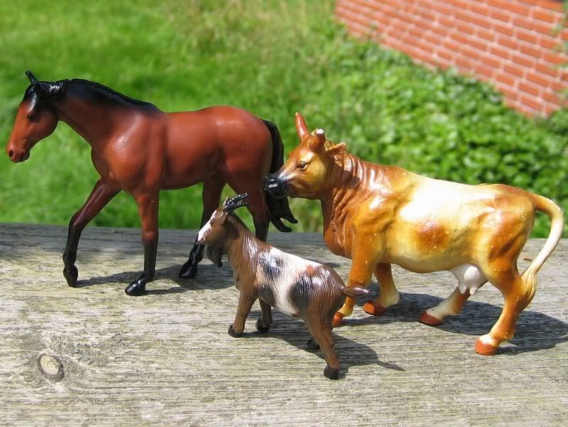 Godolphin arab horse and Siku-fake.. :o Sikuers