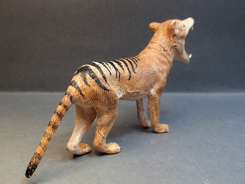 The thylacine from Southlands Replicas, - item no 00000 :-D Southland00000b_zpsvpmtbtyp